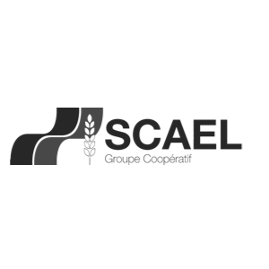 SCAEL